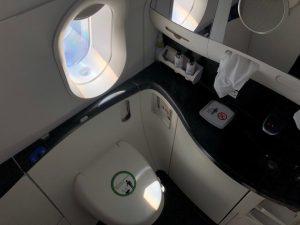 Tiếp viên luôn nhắc hành khách không đi vệ sinh lúc máy bay cất cánh-hạ cánh?